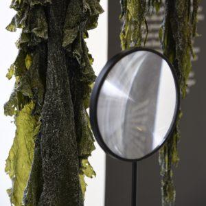 Design des communs matériaux vivants plantes LIGA